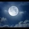 Союзник - историческая личность. В. ХОФМАНН. - последнее сообщение от La Luna